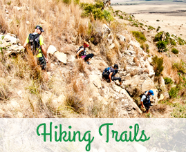 Attractions in the area - Hiking